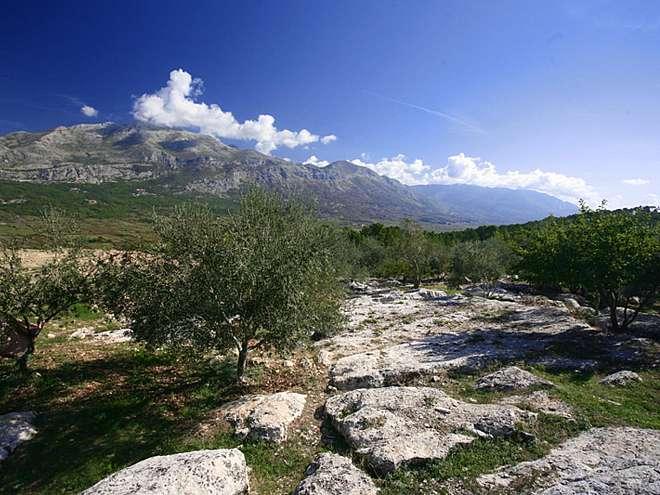 Agrotourism Glavinja